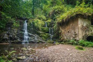 waterfall in a green area